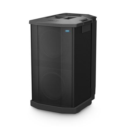 Bose F1 Subwoofer (1000 Watts) - Front