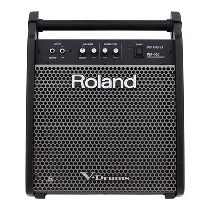 Roland PM-100 Personal Monitor For V-Drums (PM100)