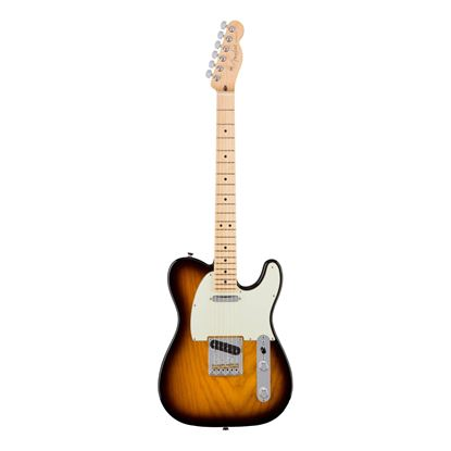 Fender American Professional Telecaster Electric Guitar - MN - 2-Colour Sunburst - Front