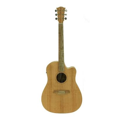 Cole Clark Fat Lady 1 Series Acoustic Guitar - Southern Silky Oak