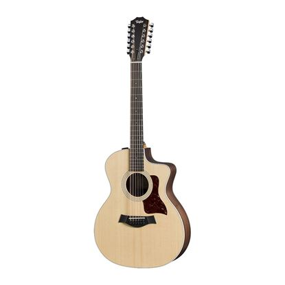 Taylor 254ce Grand Auditorium Cutaway 12-String Acoustic Guitar - Front