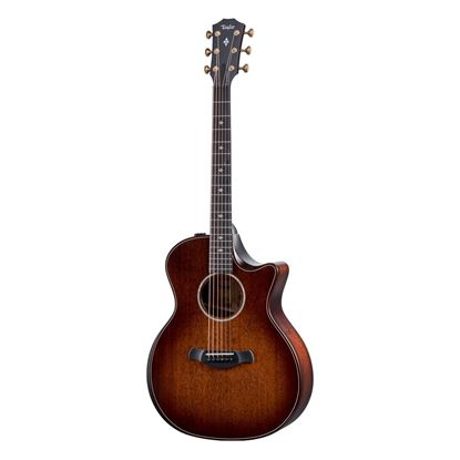 Taylor 324ce Builders Edition Acoustic Guitar - Front
