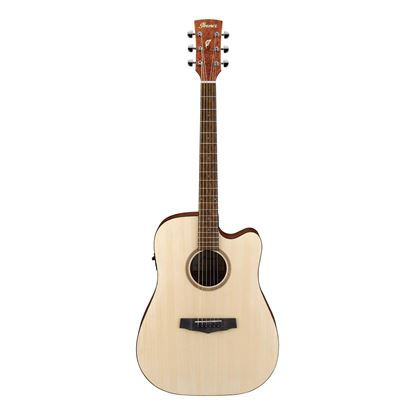 Ibanez PF10CE Open Acoustic Guitar with Pick Up