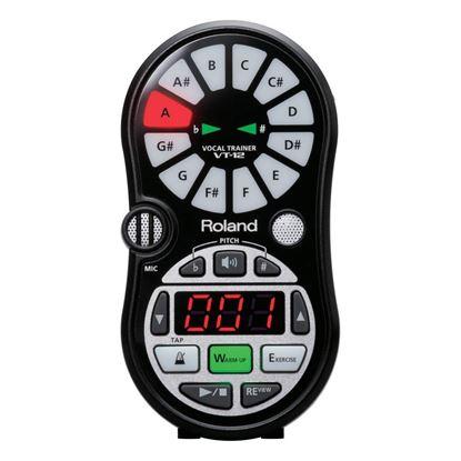Roland VT12 Vocal Trainer - Front