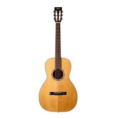 Tasman TA100P Parlour Acoustic Guitar with Case - Front