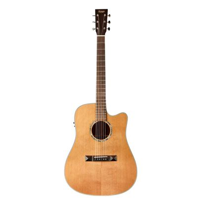 Tasman TA100-CE Cutaway Acoustic Electric Guitar with Case - Front