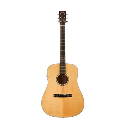 Tasman TA300-E Acoustic Electric Guitar with Case - Front