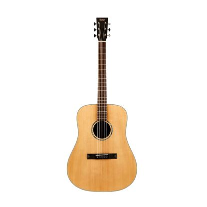Tasman TA200-E Acoustic Electric Guitar with Case - Front