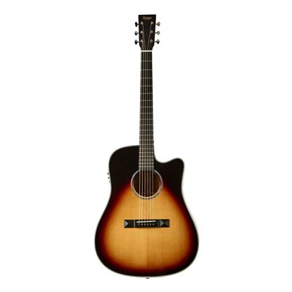 Tasman TA300-CE Cutaway Acoustic Electric Guitar with Case - Front