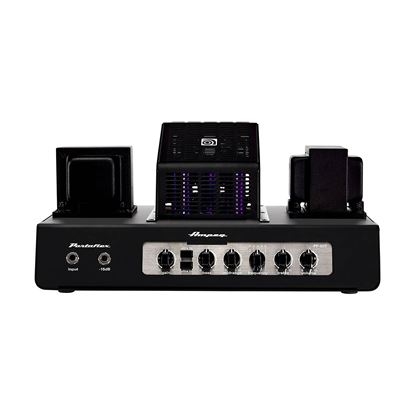 Ampeg PF-50T Portaflex Series All-Tube Ultra-Compact Bass Head at 4 or 8ohms (50w)