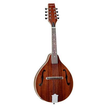 Tanglewood TWMTMH Teardrop Mandolin in Mahogany