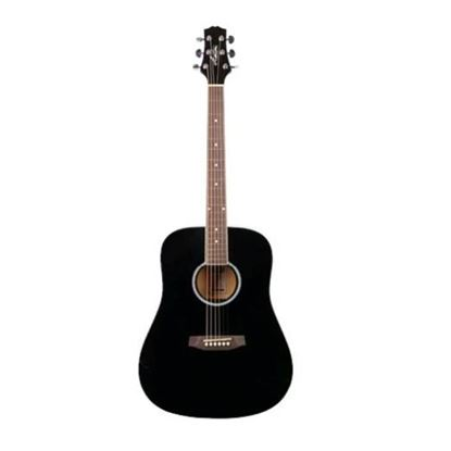 Ashton D20 Acoustic Guitar with Hardcase (APWCC) - Black