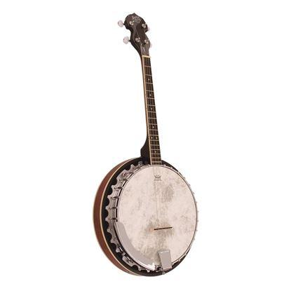 Barnes & Mullins BJ304GT Perfect 4-String Gaelic Tenor Banjo