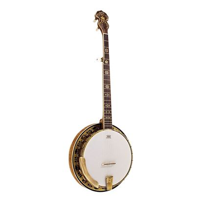 Barnes & Mullins BJ500M Troubadour 5-String Banjo